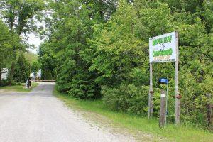 maple leaf campground